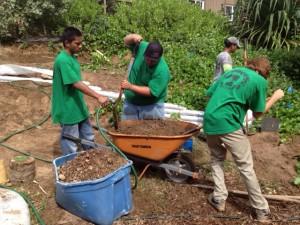 Ka Hale A Ke Ola Homeless Resource Center Community Garden