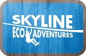 Skyline Eco-Adventures website link
