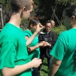 Haiku Aina Permaculture Initiative 3